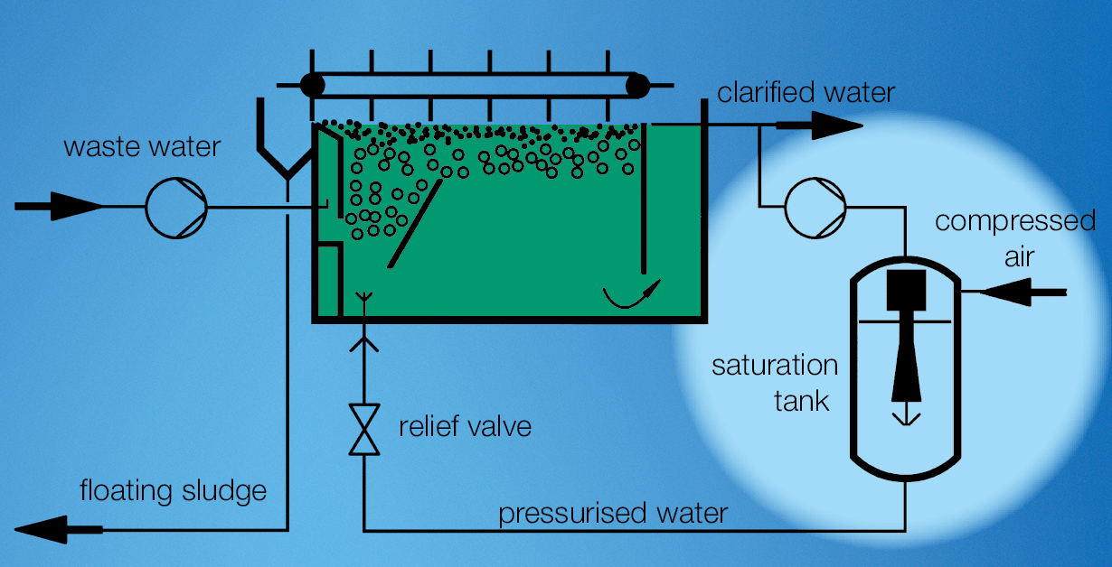Dissolved air flotation for secondary clarification in a biological water treatment plant